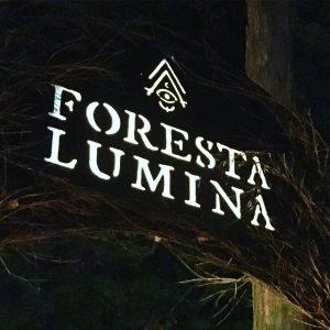 Foresta Lumina Coaticook Québec Bymelm