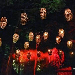 Foresta Lumina Coaticook Qc Bymelm