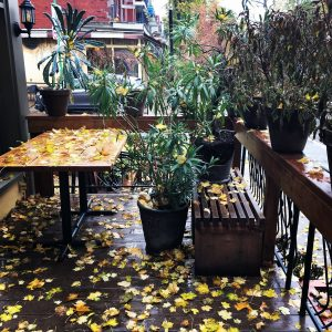 Montréal un jour de pluie Bymelm