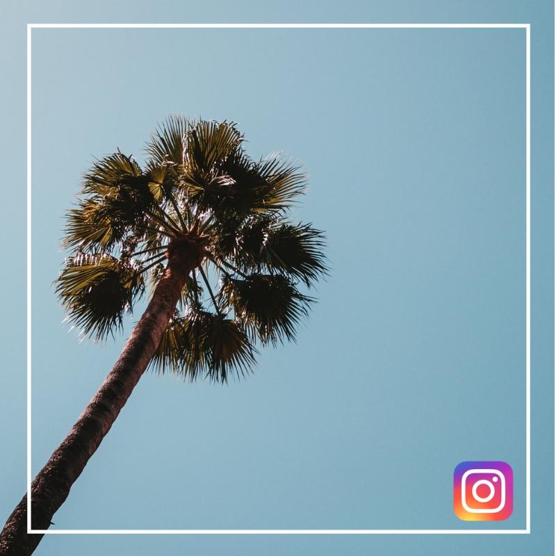 Bymelm Instagram soleil