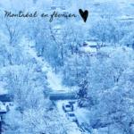 Montréal en février - Bymelm