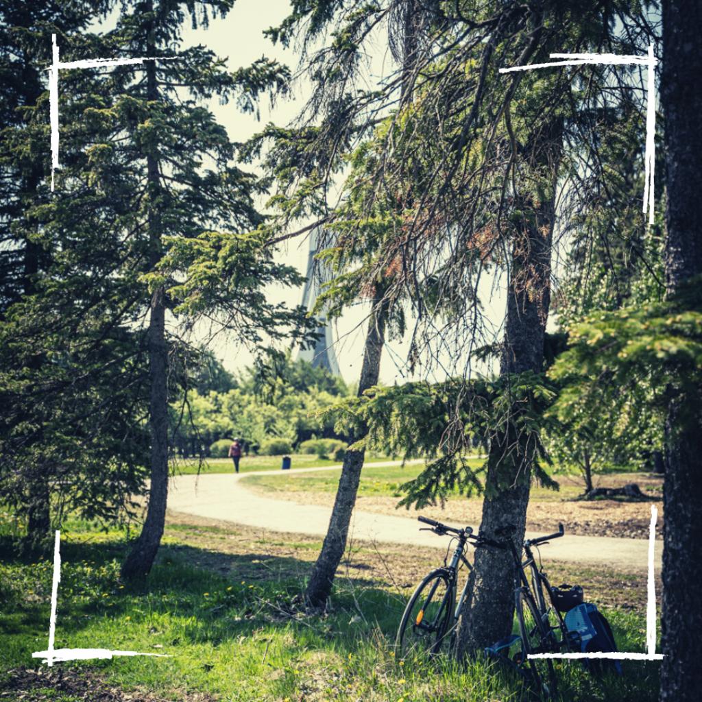 Parc Maisonneuve - MTL