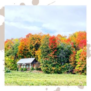 automne Québec - Bymelm