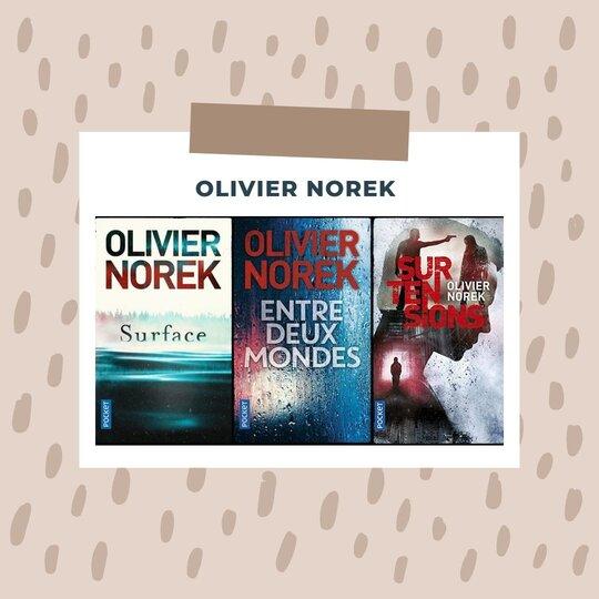 livres Olivier Norek